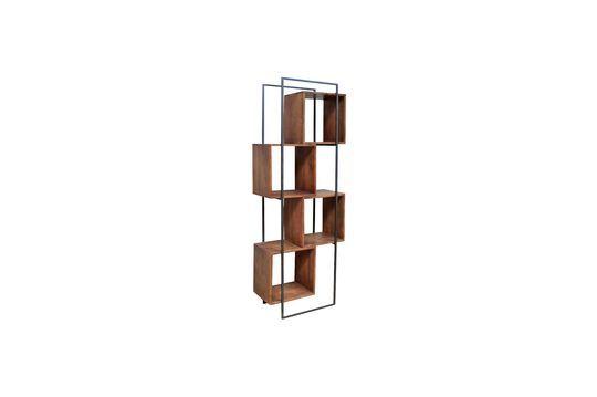 Mangobaum-Regal Rubik
